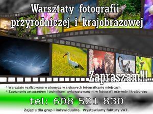 Warsztaty fotografii przyrodniczej i krajobrazowej